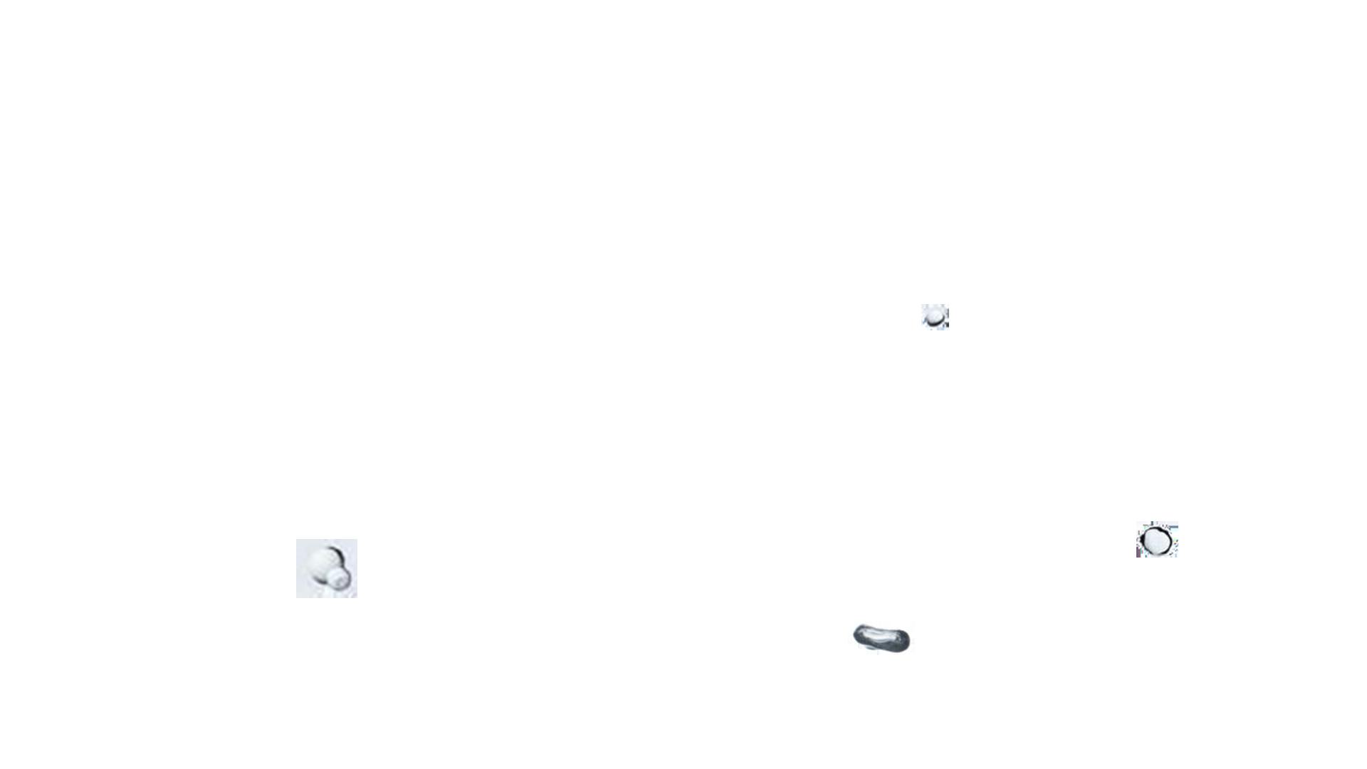 plombier-plomberie-chauffe-eau-traitement de l'eau-chauffage-arrosage automatique-pompe a chaleur-plomberie generale